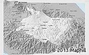 Gray 3D Map of Cartago
