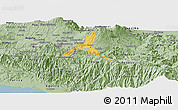 Savanna Style Panoramic Map of Cartago