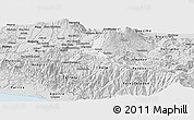 Silver Style Panoramic Map of Cartago