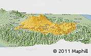 Savanna Style Panoramic Map of Cartago