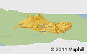 Savanna Style Panoramic Map of Cartago, single color outside