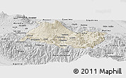 Shaded Relief Panoramic Map of Cartago, desaturated