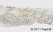 Shaded Relief Panoramic Map of Cartago, semi-desaturated