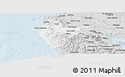 Silver Style Panoramic Map of Santa Cruz