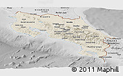 Shaded Relief Panoramic Map of Costa Rica, desaturated
