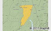 Savanna Style Map of Bettie