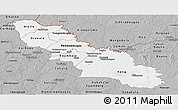 Gray Panoramic Map of Ferkessedougou