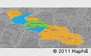 Political Panoramic Map of Ferkessedougou, desaturated