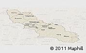 Shaded Relief Panoramic Map of Ferkessedougou, lighten