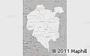 Gray Map of Odienne