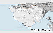 Gray Panoramic Map of Istra