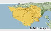 Savanna Style Panoramic Map of Istra