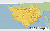 Savanna Style Panoramic Map of Istra, single color outside
