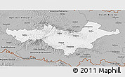 Gray 3D Map of Pozega-Slavonija