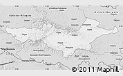 Silver Style Map of Pozega-Slavonija