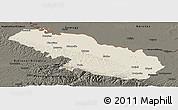 Shaded Relief Panoramic Map of Virovitica-Podravina, darken