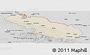 Shaded Relief Panoramic Map of Virovitica-Podravina, desaturated