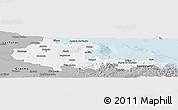 Gray Panoramic Map of Holguin