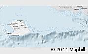 Silver Style 3D Map of Isla de la Juventud