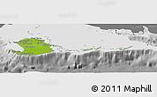 Physical Panoramic Map of Isla de la Juventud, desaturated