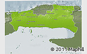 Physical 3D Map of La Habana, semi-desaturated