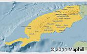 Savanna Style 3D Map of Pinar del Rio