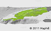 Physical Panoramic Map of Pinar del Rio, desaturated