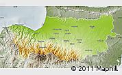 Physical Map of Nicosia, semi-desaturated
