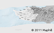 Gray Panoramic Map of Paphos