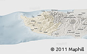 Shaded Relief Panoramic Map of Paphos, semi-desaturated