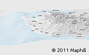 Silver Style Panoramic Map of Paphos