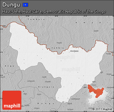 Gray Map of Dungu