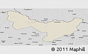 Shaded Relief Panoramic Map of Dungu, desaturated