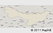 Shaded Relief Panoramic Map of Dungu, semi-desaturated