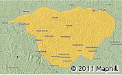 Savanna Style 3D Map of Mweka