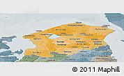 Political Shades Panoramic Map of Frederiksborg, semi-desaturated