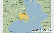 Savanna Style Map of Staden Kobenhavn