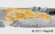 Political Shades Panoramic Map of Dominican Republic, desaturated