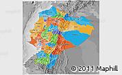 Political 3D Map of Ecuador, desaturated