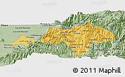 Savanna Style Panoramic Map of Canar