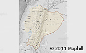 Shaded Relief Map of Ecuador, desaturated