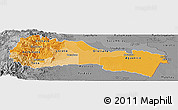 Political Shades Panoramic Map of Napo, desaturated
