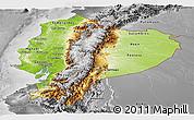 Physical Panoramic Map of Ecuador, desaturated