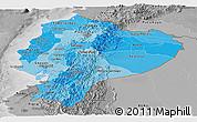Political Shades Panoramic Map of Ecuador, desaturated