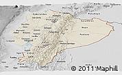 Shaded Relief Panoramic Map of Ecuador, desaturated