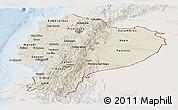 Shaded Relief Panoramic Map of Ecuador, lighten