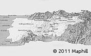 Gray Panoramic Map of Pichincha