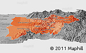 Political Shades Panoramic Map of Pichincha, desaturated