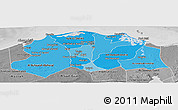 Political Shades Panoramic Map of Lower Egypt, desaturated