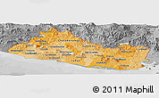Political Shades Panoramic Map of El Salvador, desaturated